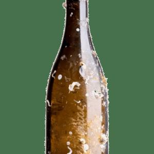 Botella de Vino Attis Mar