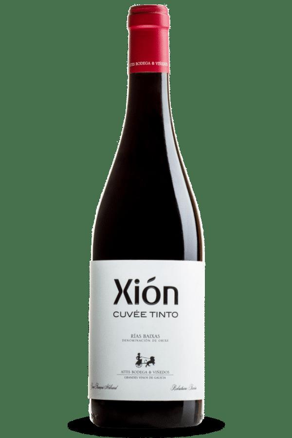 botella de vino xión cuvée tinto