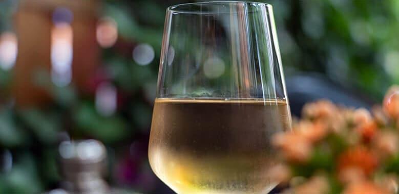 copa de vino blanco sobre fondo de flores y plantas