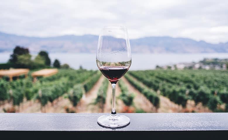 propiedades vino tinto