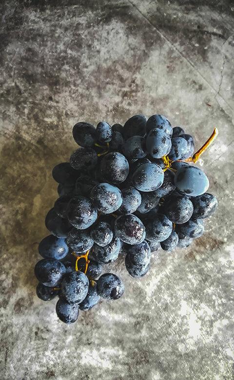 uvas vino tinto